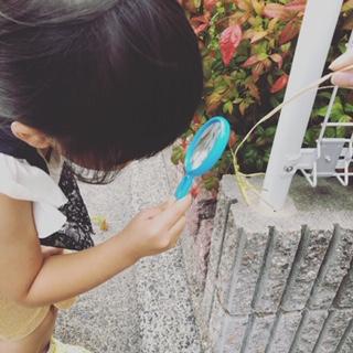 娘が虫眼鏡で観察しているところ